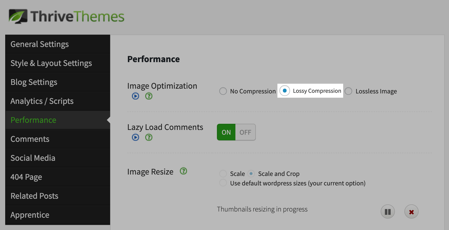 thrive themes lossy compression image